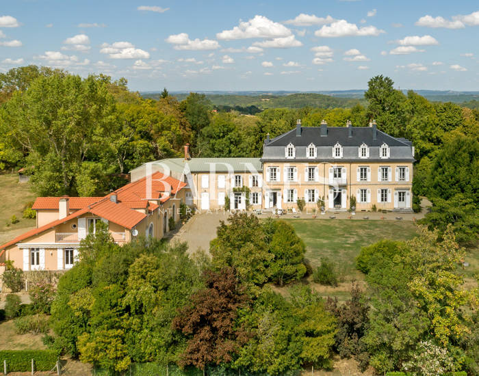 CHATEAU NAPOLEON III, FACE AUX PYRENEES SUR 54 HECTARES