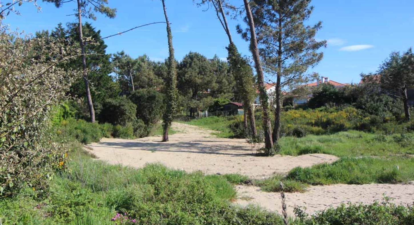 land for sale anglet